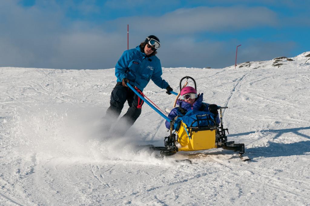 skicart